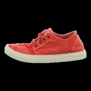 Sneaker - Natural World - Basket Enzimatico - rojo enzimatico