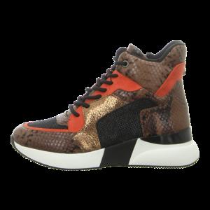 Sneaker - La Strada - High Sneaker - snake tan multi