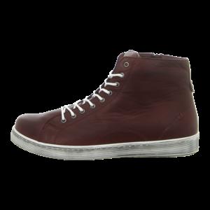 Sneaker - Andrea Conti - burgund