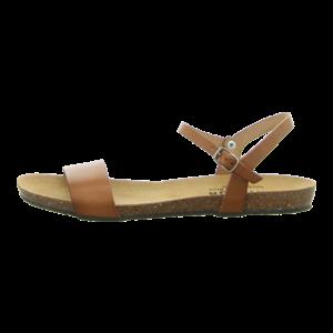 Sandalen - Plakton - Mam Ambo - camello