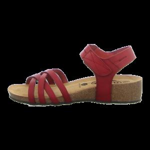 Sandaletten - Plakton - Normandie - grana